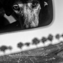 Christine Krämer – Photography
