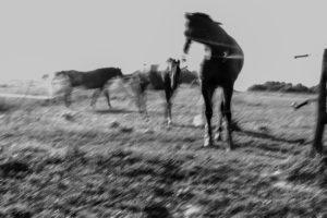 Christine Krämer · Photography · 2013