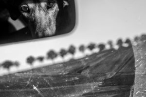 Christine Krämer · Photography · 2015